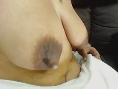 Boobs, bush, bbw, pigs